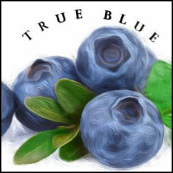 A True Blue Annual Membership